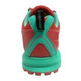 2016 Новые модели Flyknit кроссовки Женщины и Мужчины Марка Радуга Free Run 5.0 Спортивное Спортивная обувь