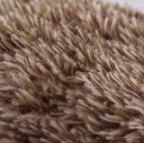Casal de pêlo de peluqueiro pedregoso