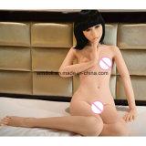 実質の膣の性の人形小さい胸の平らな箱の大人の性のおもちゃ