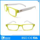 Vetri di lettura di plastica di alta qualità con modo di cuoio Eyewear delle tempie