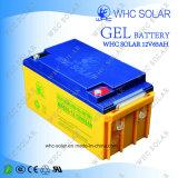 Whc bester Preis garantierte Aufladeeinheits-Batterie 12V 65ah