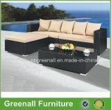 簡単な組合せ販売の屋外の藤の家具(GN-9066-2S)