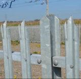 Tipo principal galvanizado cerca de W de la palizada para la seguridad