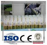 Mini cadena de producción de la leche/del yogur/de la fruta