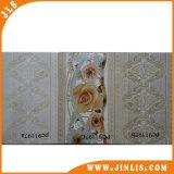 Azulejos de cerámica de la pared del cuarto de baño y de la cocina de Digitaces
