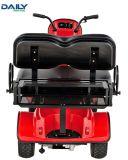 Kar van het Golf van de Zetel van Ce de Dubbele Mini Elektrische met 24V de Motor Dm800 van 1500W