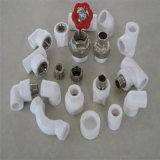 온갖 PPR 관 및 이음쇠 또는 중국 공장 또는 중국 제조자