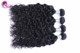 Capelli umani naturali dell'onda 100% che tessono prezzo all'ingrosso dei capelli brasiliani