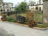 Самая лучшая загородка ковки чугуна сада дома качества, декоративный ограждать сада