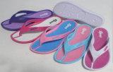 Flops Flip повелительницы Wonem ЕВА, PE, тапочка ЕВА, сандалия пляжа