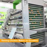 Chaud classique de vente d'un type de l'équipement automatique de la ponte des oeufs de poulet