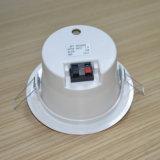 형식 직업적인 천장 오디오 스피커
