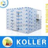 Малая комната охладителя емкости сделанная Koller