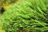 Haltbarer Monofil-künstliches Gras für Fußballplatz mit SGS-Bescheinigung