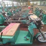 乗客のための3車輪のオートバイのトラックの貨物電気三輪車