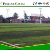 Terrain de pelouse artificiel pour le sport Yarn PE (SP-50ST-518-CS)