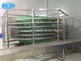 Gewundene abkühlende Förderanlage vom China-Hersteller