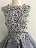 O laço de Tulle Appliqued vestidos Sleeveless do vestido do partido do baile de finalistas