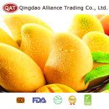 Qualitäts-frische vollständige Mangofrucht mit gutem Preis