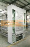 H Apparatuur van de Kooi van de Laag van de Batterij van het Type de Volledige Automatische Gegalvaniseerde voor Kip