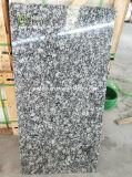 Художественные торжественное G418 Spray белого гранита плитка для пола и встать на стене оболочка