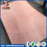 тополь 1220*2440*12mm/твёрдая древесина/переклейка Combi деревянная с клеем WBP для украшения