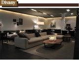 Sofà caldo moderno di lusso di 2016 sofà di legno del salone del sofà della mobilia del nuovo dell'accumulazione della mobilia del sofà D-27 nuovo di disegno del sofà vendite della mobilia