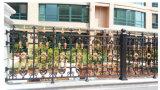 Het decoratieve Gegalvaniseerde Schermen van de Tuin van het Staal van de Deklaag van het Poeder van /Black van de Omheining van het Smeedijzer met de Comités van het Ijzer