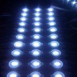 Las luces exteriores impermeables CC12V con CE/RoHS módulo LED