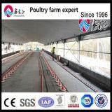 Оборудование птицефермы цыпленка для цыпленка мяса
