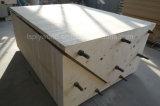 La película concreta constructiva del molde del diseño hizo frente a la madera contrachapada