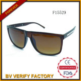 F15529 China Manufacturer Square Sunglasses mit Metal Decoration