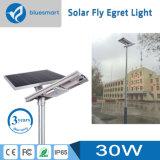 30W lumière extérieure de l'éclairage DEL de réverbère de lampe solaire solaire de jardin avec le panneau solaire