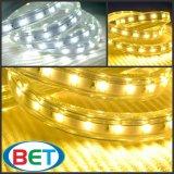 Indicatore luminoso di striscia esterno all'ingrosso di bianco 50m/Roll 5630 LED di 110V 220V