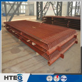 Surchauffeur de vapeur de traitement par le chauffage de marque de Hteg de fournisseur de la Chine