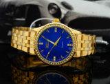Het hete Horloge OEM/ODM Van uitstekende kwaliteit van de Diamanten van het Geval van het Roestvrij staal van de Verkoop