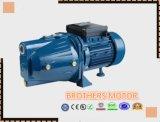 Wasser-Pumpe des Qualitäts-inländische Strahlen-100L