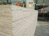 Tableros de contrachapado de chopo normal / La construcción de madera contrachapada de