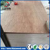 Linyi 12mm BB/CC Bintangor/het Triplex van het Vernisje van de Pijnboom/van de Berk/van het Hout Basswood/Okoume voor het Gebruik van de Verpakking