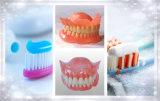 Material adesivo Methylvinylether da dentadura/copolímero misturado de sais ácido maleico