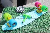 لوح التزلج بلاستيكيّة مع [س] تصديق ([يفب-2206])