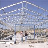Niedrige Kosten-Huhn-Bauernhof-Entwurfs-Baustahl-vorfabriziertes Geflügel bringen unter