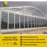 шатер венчания стеклянной стены рамки 6082t6 Alumininum