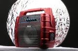 '' Altoparlante di karaoke Bluetooth 6.5 ricaricabili senza fili alla moda