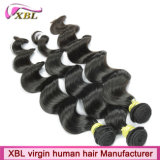 100%の人間の毛髪の拡張加工されていないRemyのバージンのインド人の毛