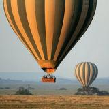 Aerostato di aria calda polimorfico variopinto della caramella per andare scatto facente un giro turistico di cerimonia nuziale della concorrenza di volo