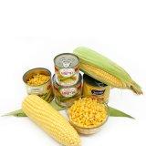 Maïs en boîte avec la qualité