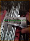 Holder를 위한 높은 Quality Stainless Steel Rod