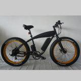 Мальчик жира Fantas-Bike001 Харлей E велосипед