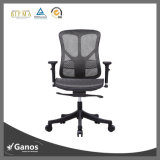 El personal de oficina del acoplamiento preside la silla simple y elegante de la oficina